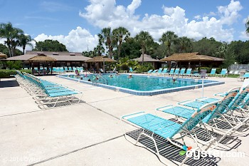 East Pool at Cypress Cove Nudist Resort